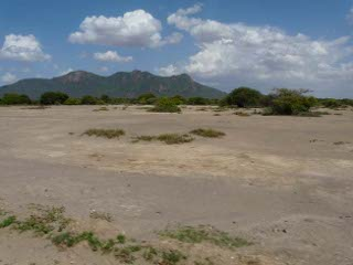 Pangani River - Floodplain