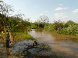 The Pangani River